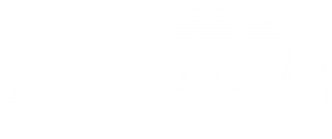 Xameleon Theatre Productions logotype